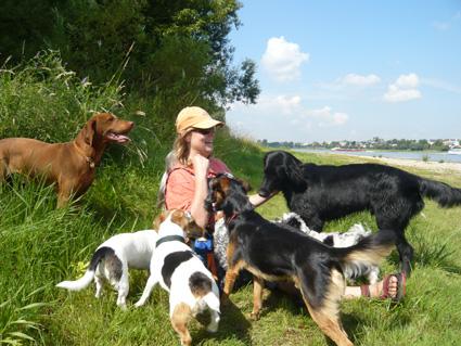 Hundespaziergang köln